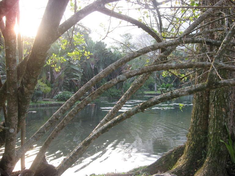 Lake - Rio de Janeiro
