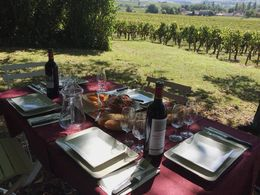 The first part of lunch provided after our morning ride and tour of the Château. Fruit and cheese platters followed! , Mark - October 2014