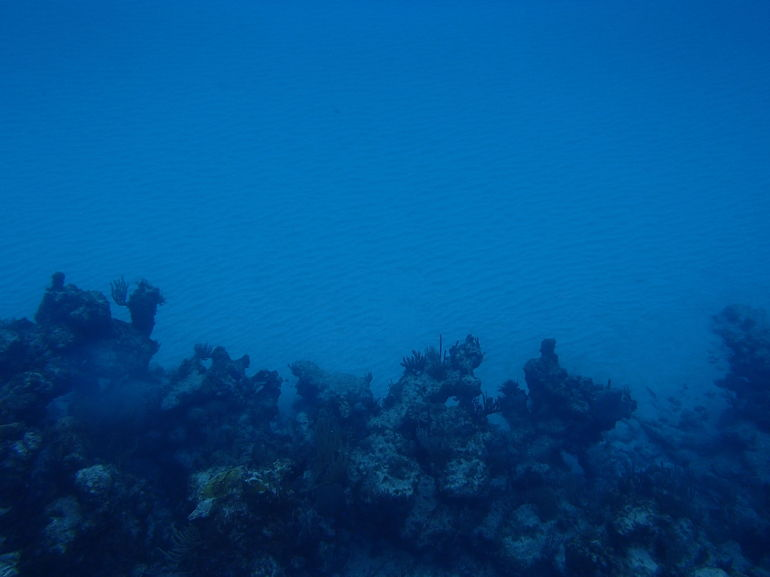 second site - Caribbean