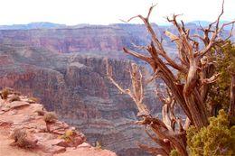 View of Grand Canyon., Scott B - February 2009