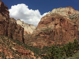 Zion hike to Emerald Pools , Erin B - June 2016