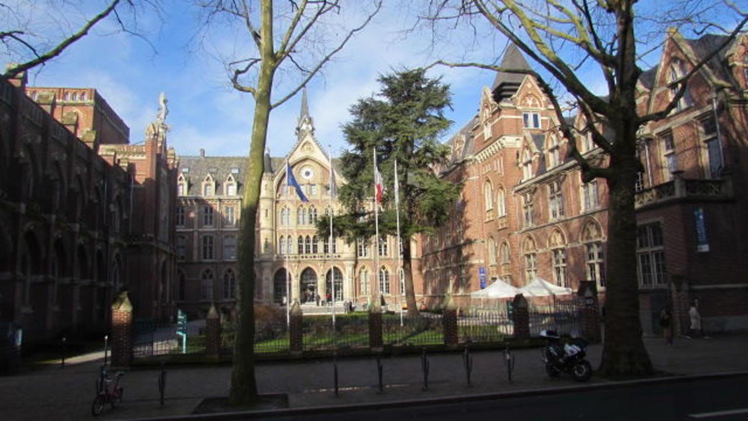 MÁS FOTOS, Tour turístico por la ciudad de Ámsterdam