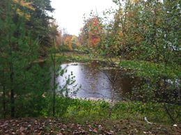 Small Pond , Sandy Y - October 2012