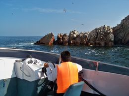 Checking out the sea birds roosting on the rocks at Ballesta Islands from tour boat, Tim Leffel - August 2011