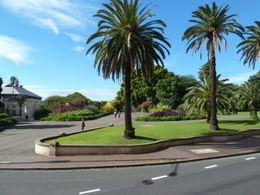 Botatical Gardens , Susan C - May 2011