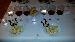 Vin- och ostprovning på vinhuset Torres. , Sara G - October 2014