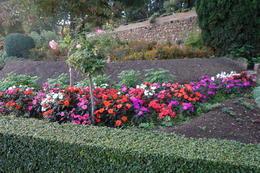 The gardens at Genaralif , kowie55 - November 2016