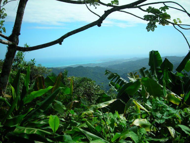 Beautiful Vista - San Juan