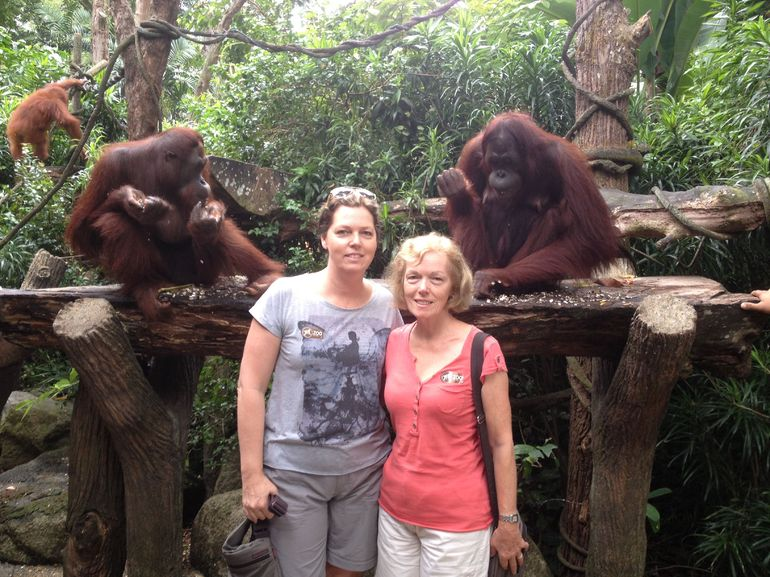 Breakfast with the orangutans (and a snake!) - Singapore