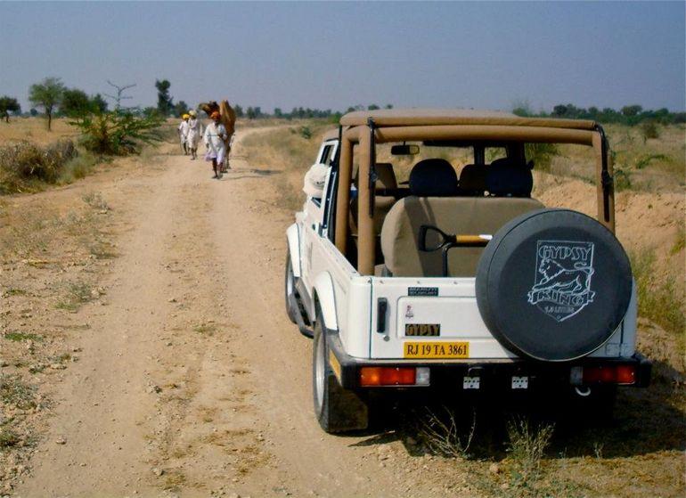 Jeep safari - Jaipur