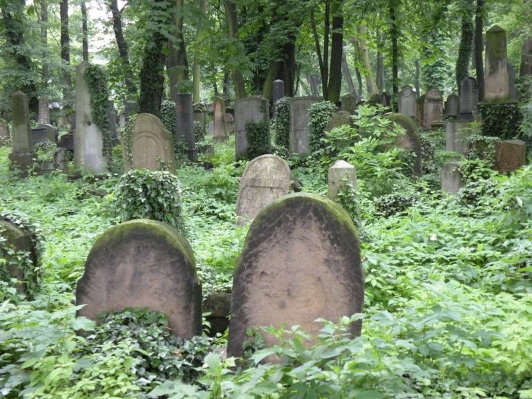 'New' Jewish Cemetary - Auschwitz-Birkenau Museum Trip - Krakow