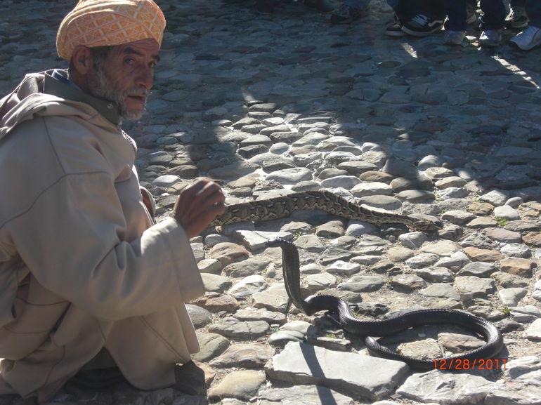 The Snake Charmer - Costa del Sol