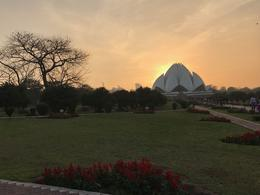 Lotus Temple , Lucy L - February 2017