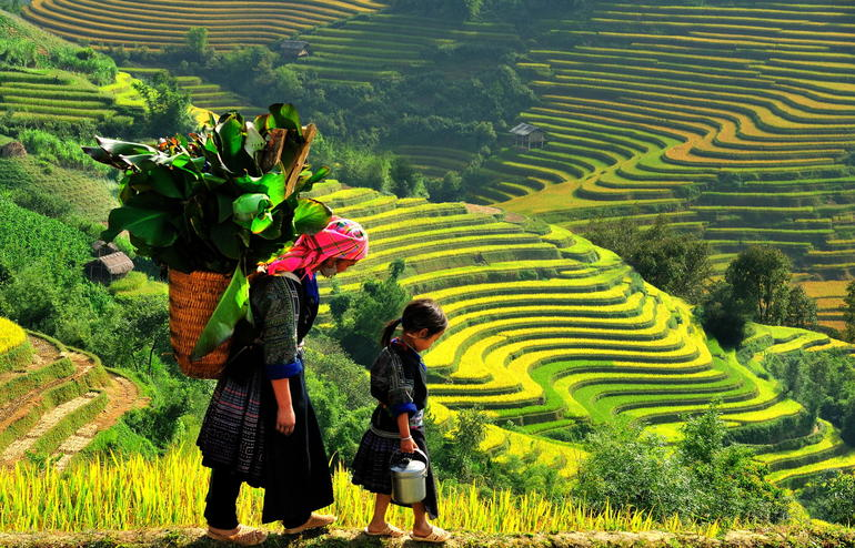 Sapa Trekking Tours - 2 Days 1 Night Stay At Homestay photo 20