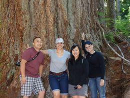 Calvin Vu, Stacey McHenry, Kim Vu, and Monet Shannon at Mount Rainier , Stacey M - October 2013