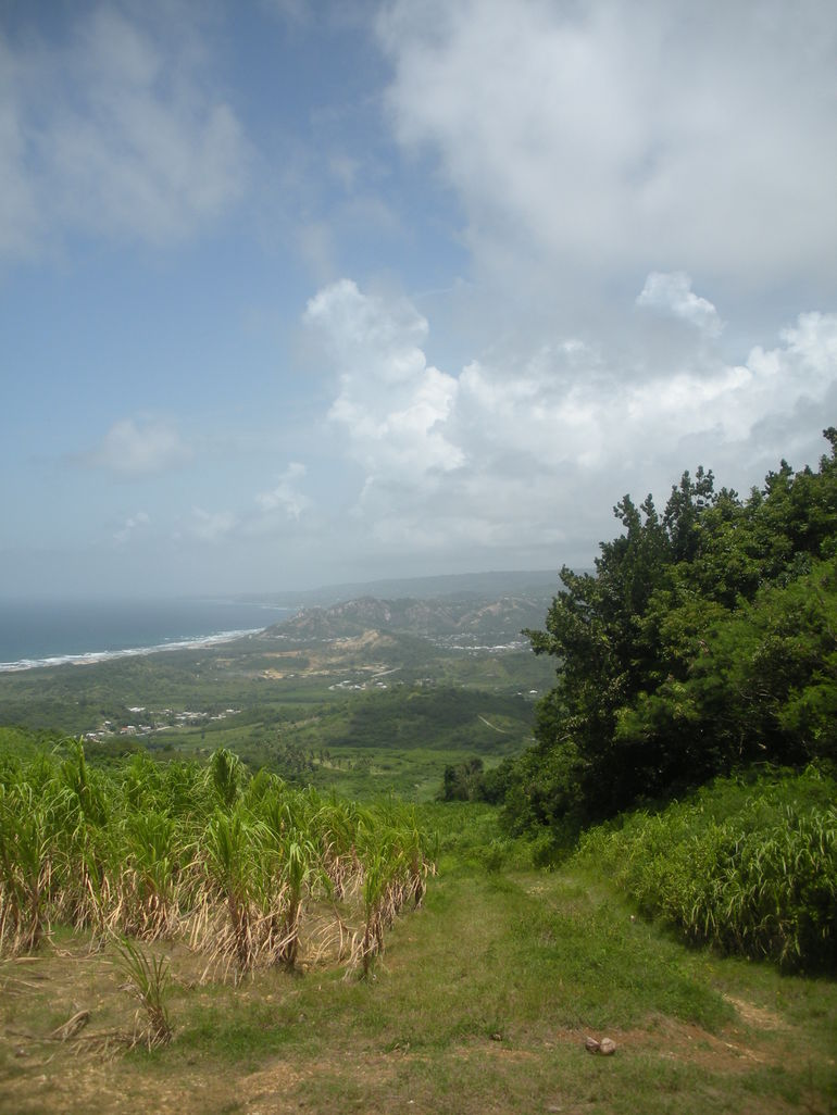 Looking down over Barbados - Barbados