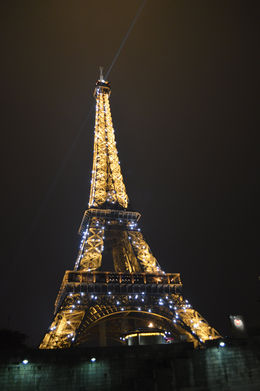 Nothing says Paris like the Eiffel Tower. - January 2014