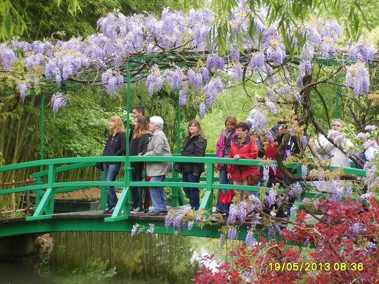 THe Bridge at the Lily pond - Paris