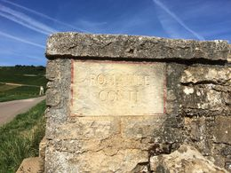 Vonne-Romanee Grand Cru , Joe K - August 2015