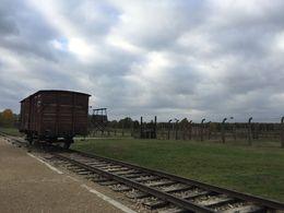 Auschwitz , Gabriela B - November 2015