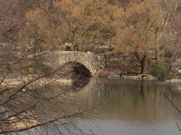 A bridge in Central Park., Roger D - April 2010