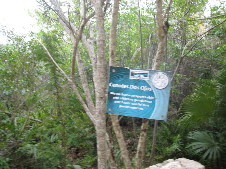 Cenote Cave Dive in Tulum - Cancun