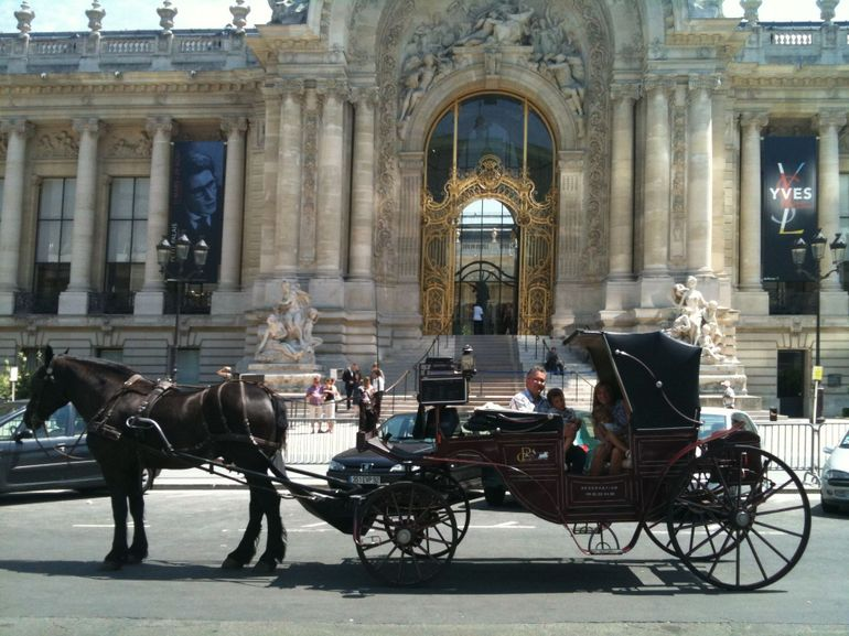 Paris Carriage and Horse -