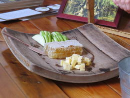 One of our final stops on the tour was the Savannah Bee Company, where we sampled various types of honey, including honeycomb served with apples and cheese. , Angela J - January 2015