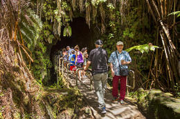 Big Island of Hawaii Day Trip: Volcanoes National Park from Oahu., Viator Insider - January 2018