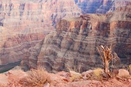 View of Grand Canyon., Scott B - February 2009