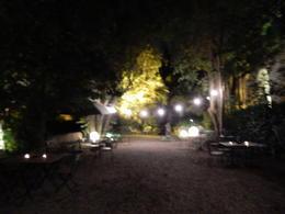 Garden of villa , judi - November 2016