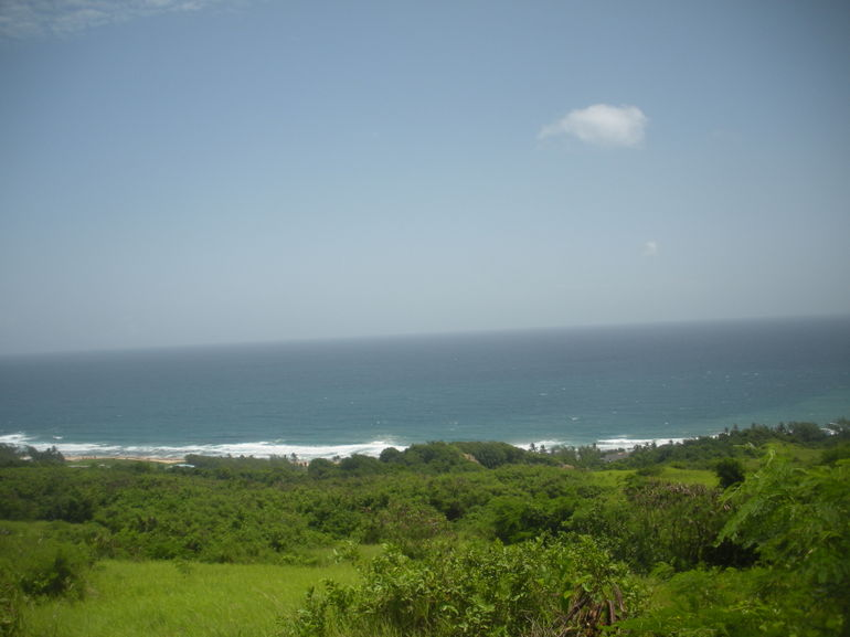 Amazing Beaches - Barbados