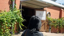First stop at Lindeman's Wines , Hdawg - January 2012