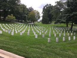 Arlington Cemetery , Carole D - August 2017
