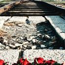 Excursión de día completo a Auschwitz-Birkenau y a la mina de sal de Wieliczka desde Cracovia con almuerzo incluido, Cracovia, POLONIA