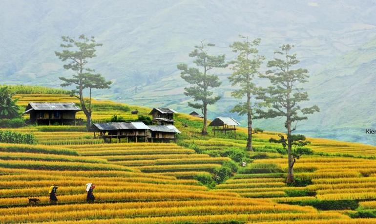 Sapa Trekking Tours - 2 Days 1 Night Stay At Homestay photo 9