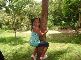 Daughter trying to climb coconut tree, Marnie J - June 2010