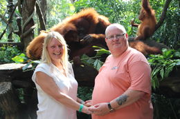 this is us with the Orangutans at breakfast , Leslie H - December 2015