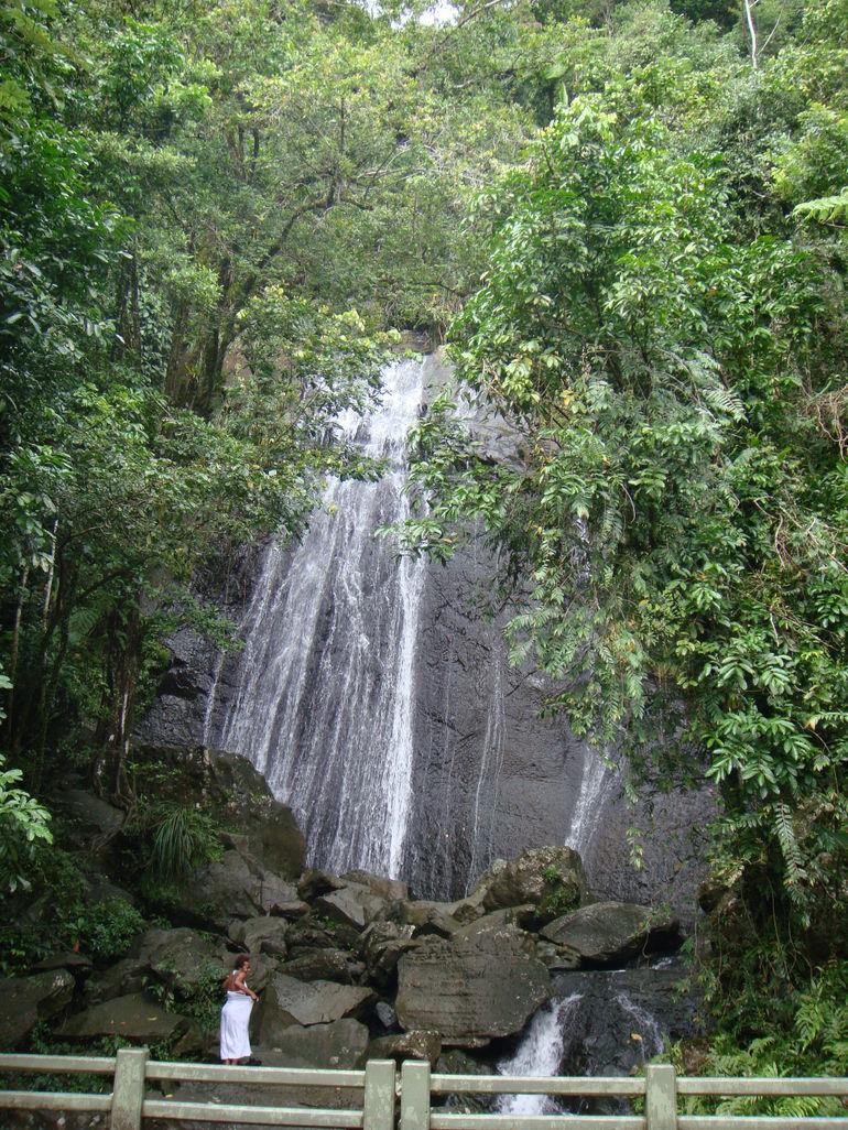 Cascada La Coca - El Yunque Rainforest - San Juan