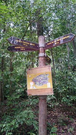 Tikal - October 2015