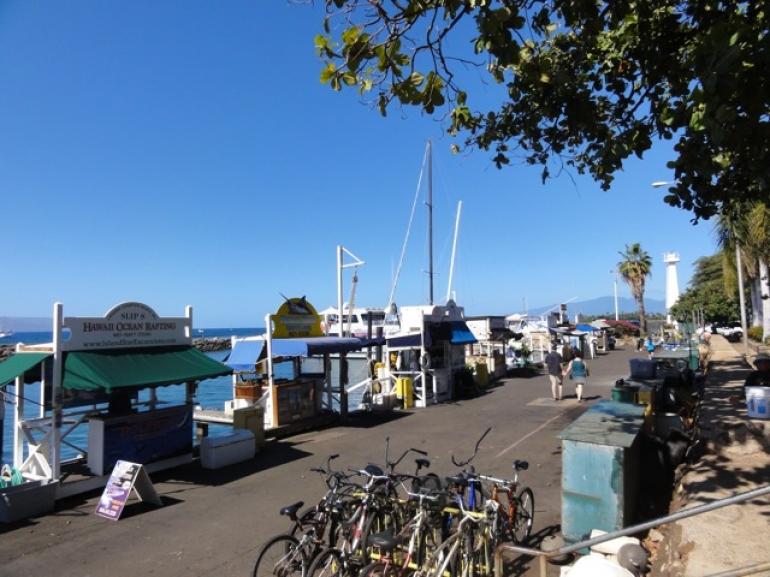 Lahaina Harbor - Maui