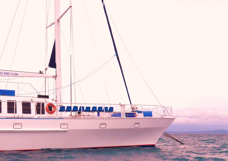 Low Isles Cruise - Port Douglas