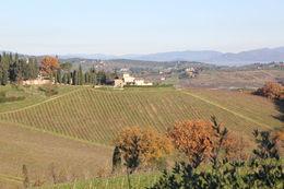 The Hills of Tuscany , Vera N - January 2016