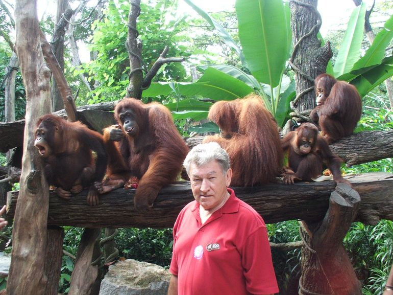 Warren amongst Friends - Singapore