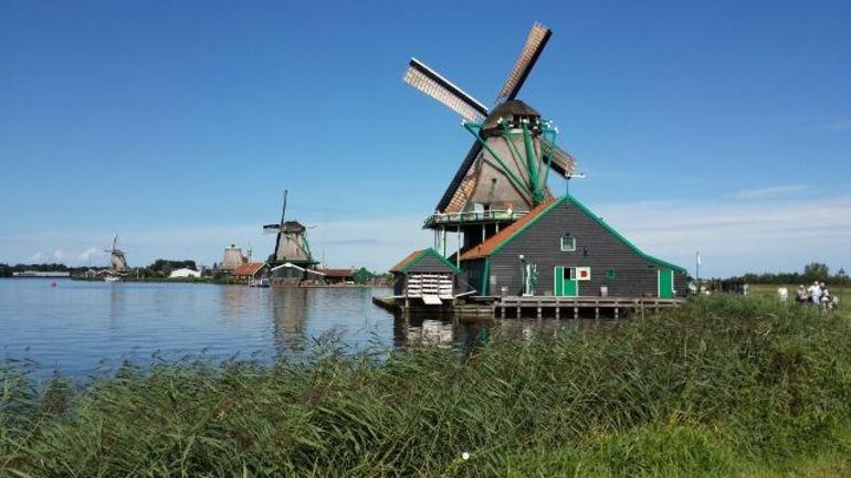 Windmills of Zaans Schats - Amsterdam