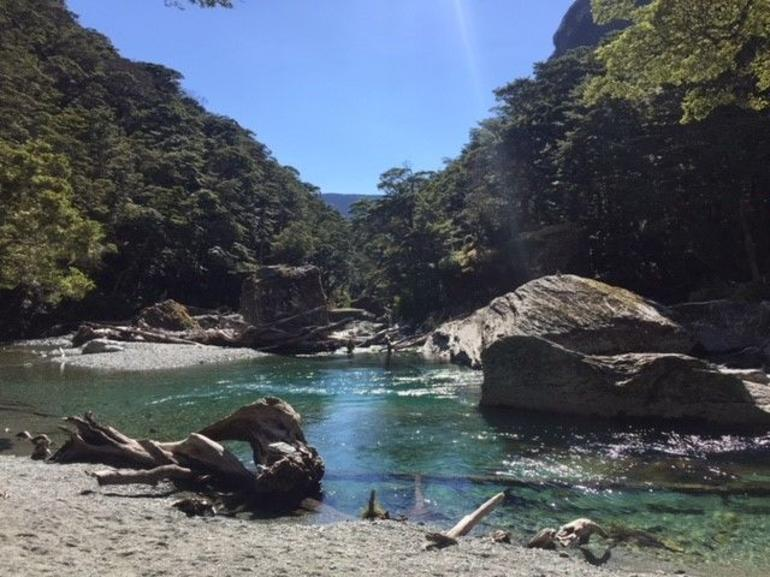 Routeburn Track Guided Hike (Full Day)