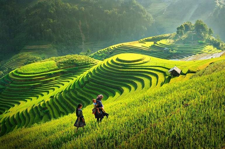 Sapa Trekking Tours - 2 Days 1 Night Stay At Homestay photo 16