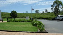 A view of the vineyard situated right next to the entry , Hdawg - January 2012