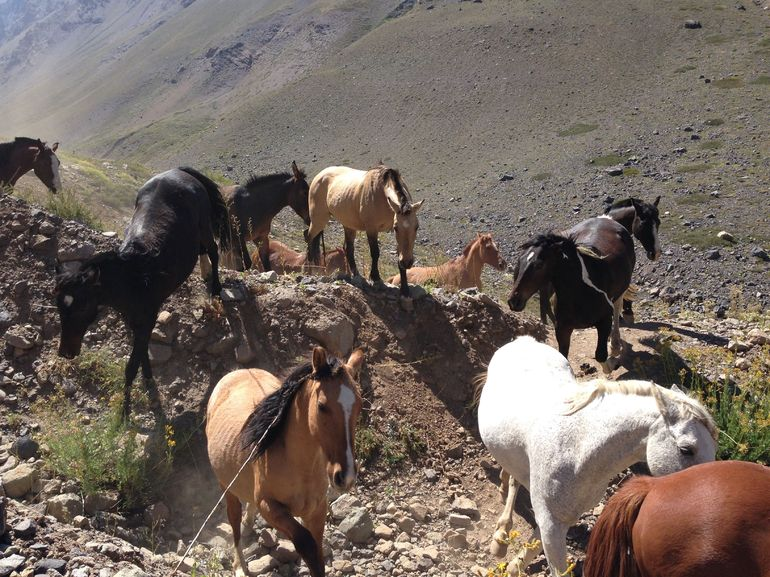 Private Tour: El Morado Hiking and Hot Springs Day Trip from Santiago