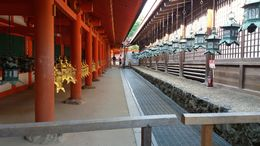 A quiet colonnade at the Kasuga Shrine in Nara invites reflection. , Gerald B - June 2016